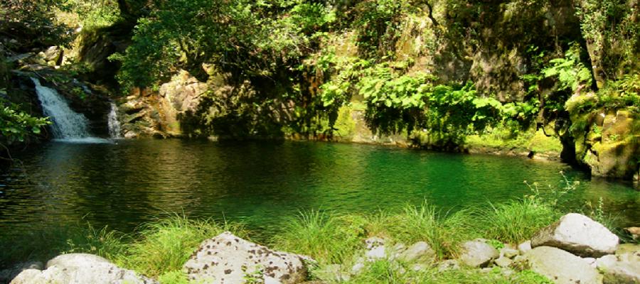 Lagoa do Poço Negro do Soajo