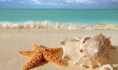 Água do mar ajuda a curar doenças