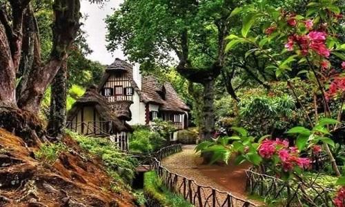 Parque Florestal das Queimadas