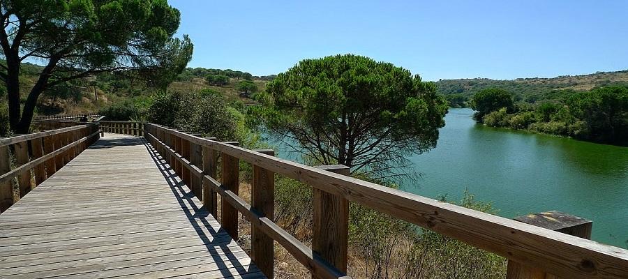 Passadiço do Parque Ecológico do Gameiro