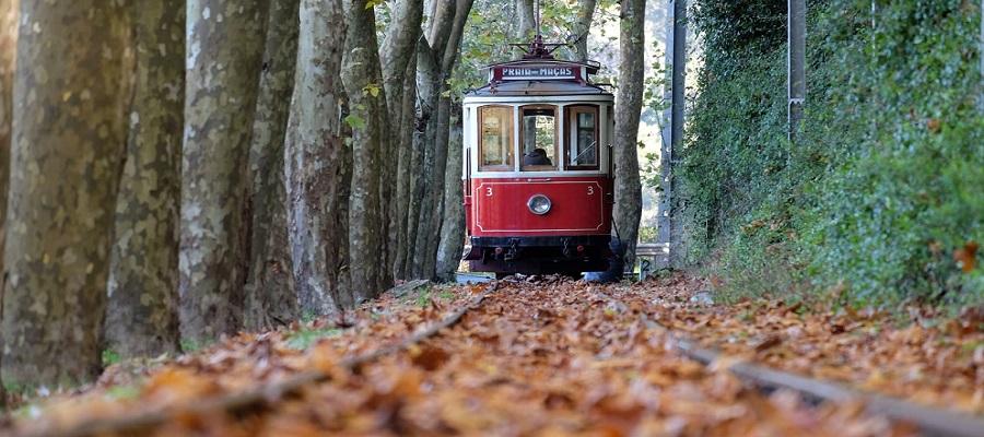 5 razões para conhecer uma das Vilas mais românticas de Portugal